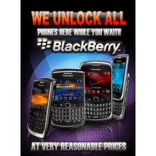 Small Poster Blackberry ( 12x16 ) Laminated
